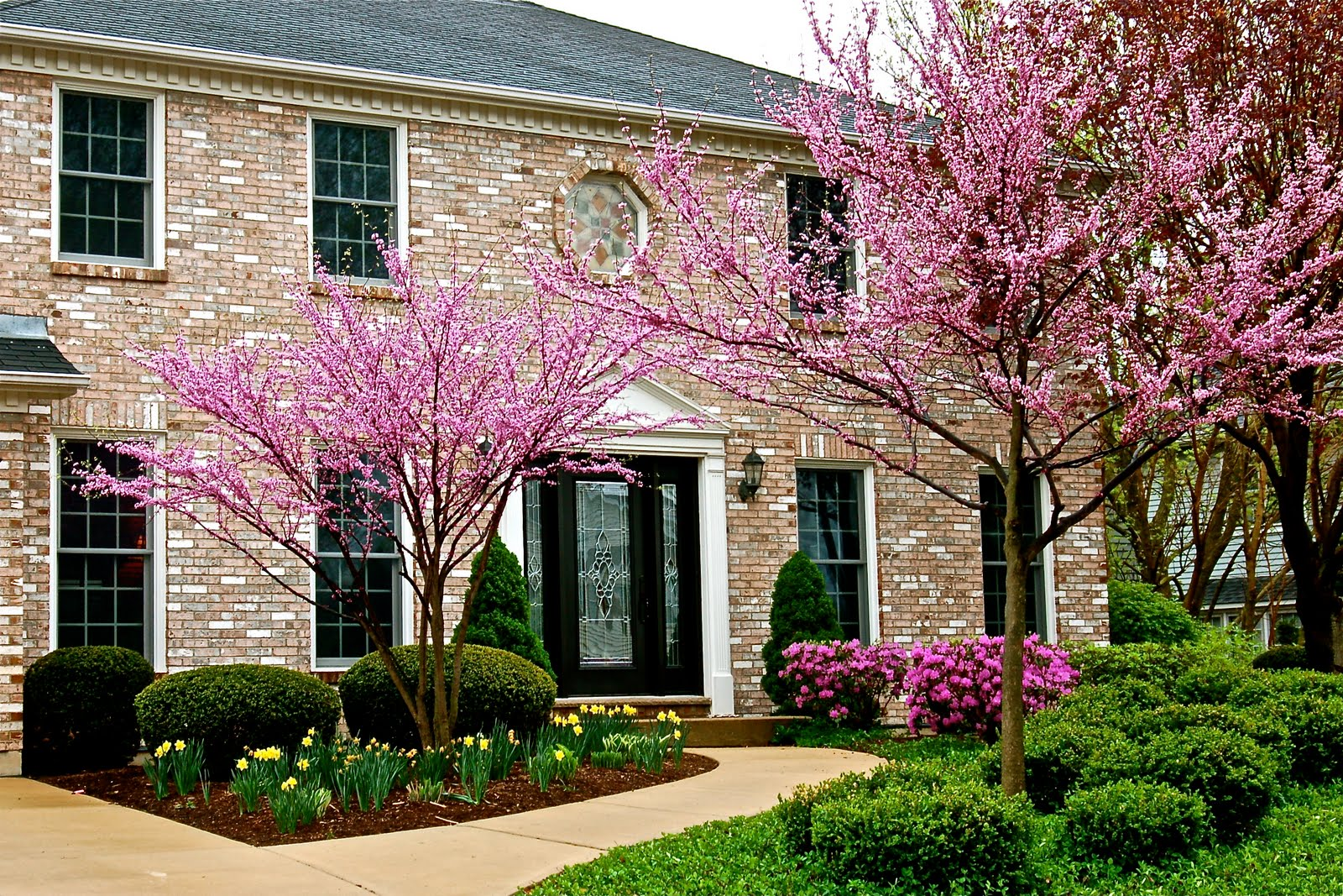 Homeowner Tips For Spring: What Homeowners Should Do After Winter