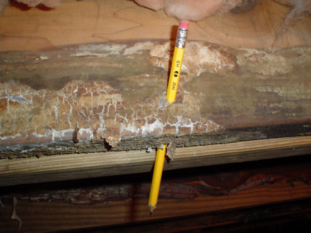 Guide to Inspecting your Home for Dry Rot in Flint MI