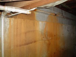Basement Rust | Warren, MI